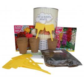 Kit de huerto infantil con semilleros, tierra turba, semillas Alheli, clavel gigante, y marcaje de semilleros