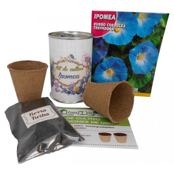 Kit de cultivo Ipomea en lata
