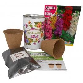 Kit de cultivo Alhili en lata